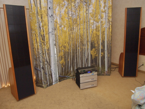 Sanders Sound Systems Model 10 Electrostatic Speakers T.H.E. Show 2012