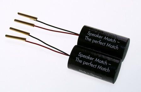 stein speaker match