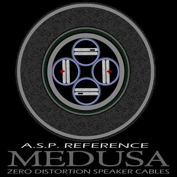 ASP MEDUSA schematic