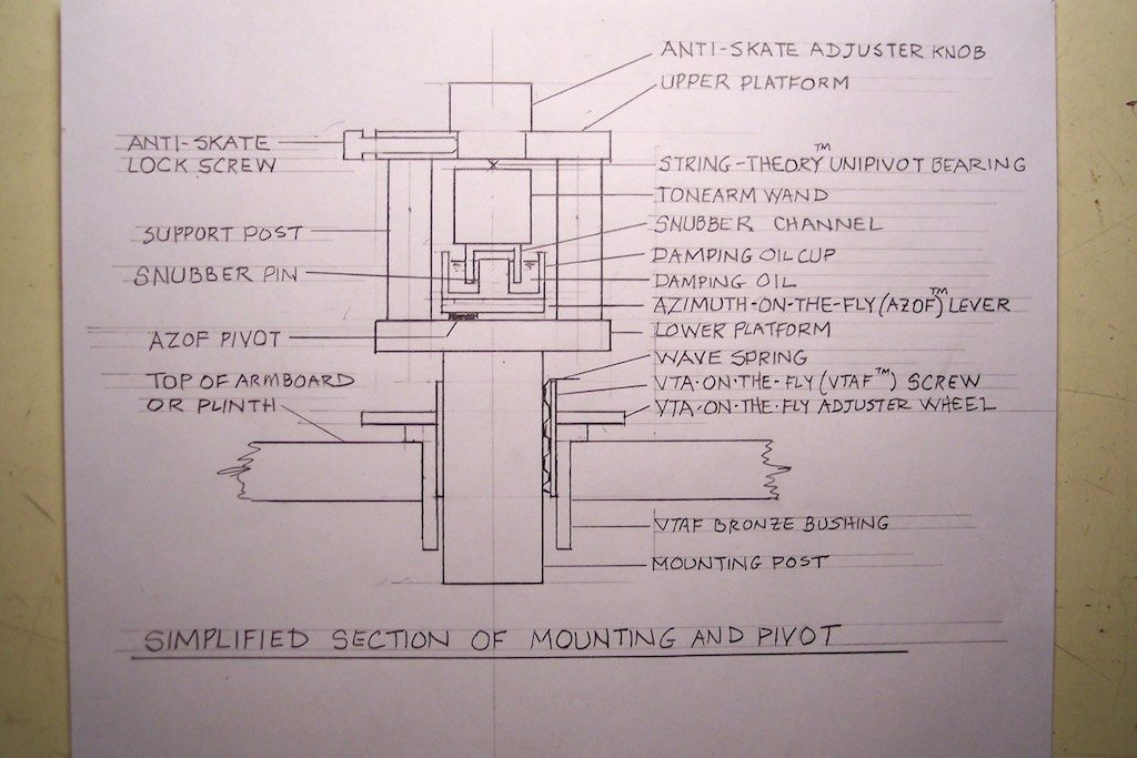 Woody cross-section diagram.